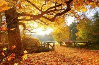 Herbsthalloween bis Winterweihnacht